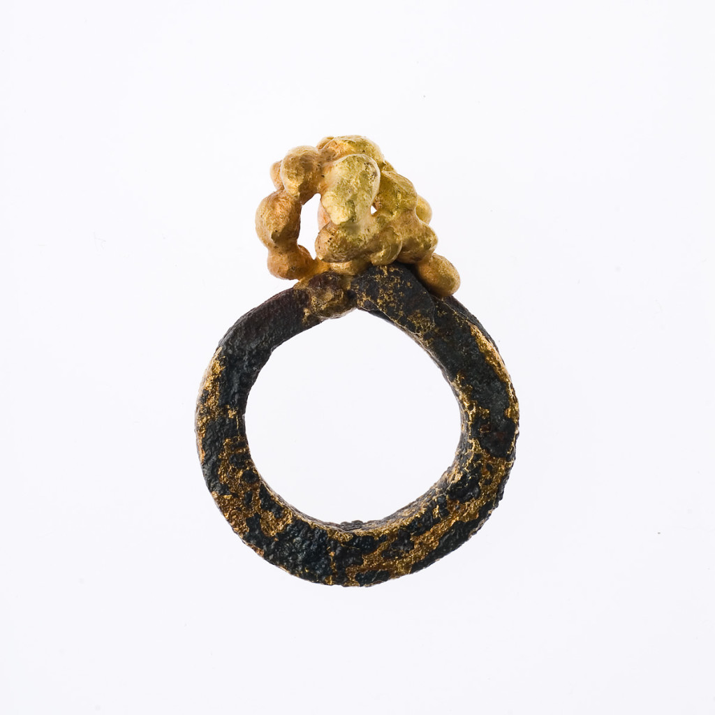 Stefano Zanini ring made of iron and gold